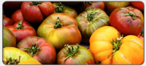 tomato-heirloom