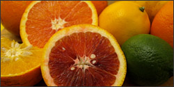 winter-citrus