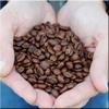 Chocolate Fish Coffee