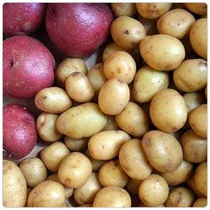 Marble Potato