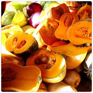 Squash - Kent Pumpkin