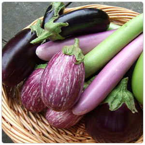 eggplant-category