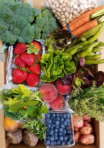 Local Organic Box