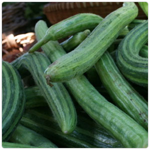 Armenian Cucumber - Produce Express of Sacramento, California