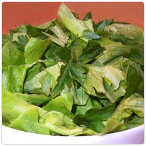 Butter Lettuce aka Boston or Bibb lettuce