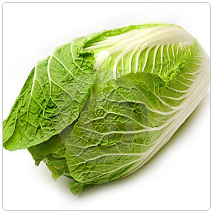 Napa Cabbage aka Chinese Cabbage