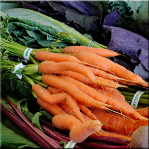 Nantes Carrots