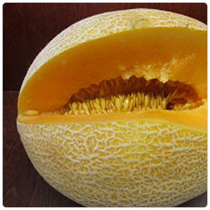 Melon - Crème de la Crème