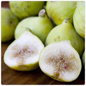 Fig, Kadota