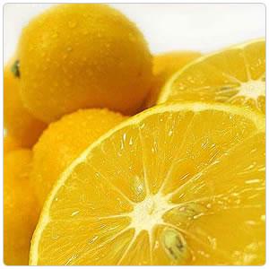 Lemon- Meyer