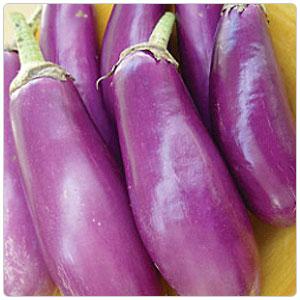 Eggplant - Neon