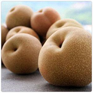 Pear - Asian Shinko