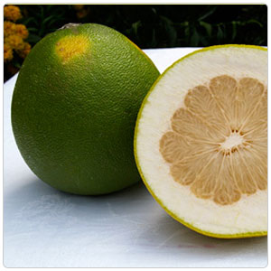 Pummelo aka Pommelo and Pomelo