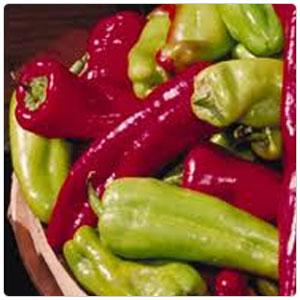 Pepper - Sonora