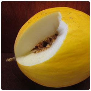 Melon - Twice as Nice