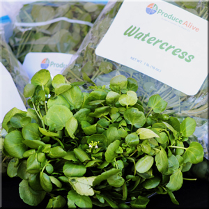 Watercress - Produce Alive
