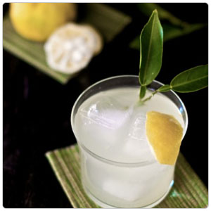 Yuzu Luxe Sour Beverage Mixer